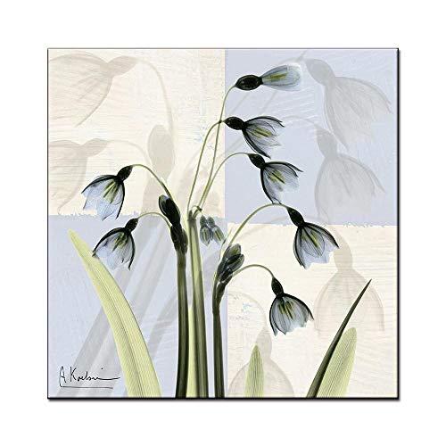 WSNDGWS Moderno Minimalista Pequeño Fresco Transparente Floral Arte Abstracto Sala de Estar Fondo Pared Pintura Decorativa Núcleo Sin Marco B2 30x30cm