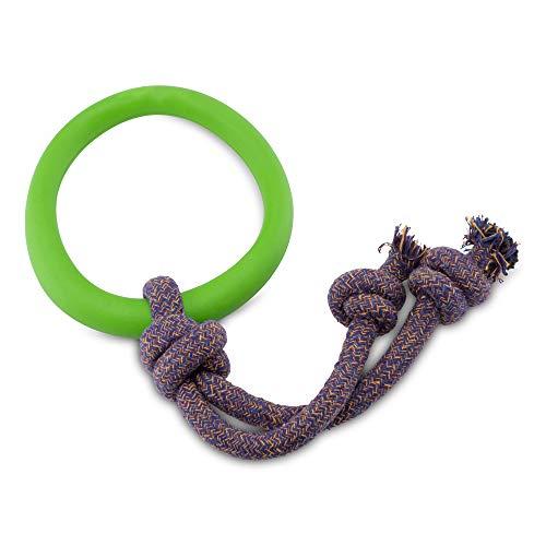 Beco Pet RHRL-003 Hoop on a Rope Ring mit Seil, L, grün