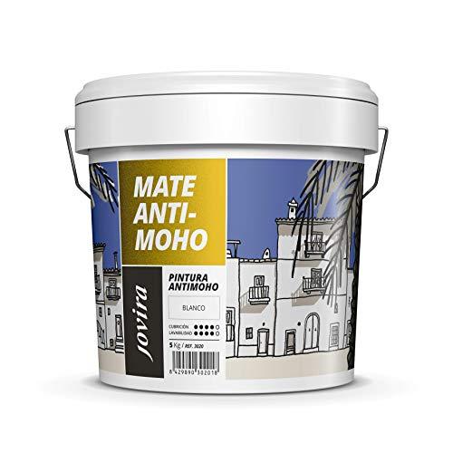 PINTURA ANTIMOHO, evita el moho, resistente a la aparición de moho en paredes, aspecto mate. (5 KG, BLANCO)