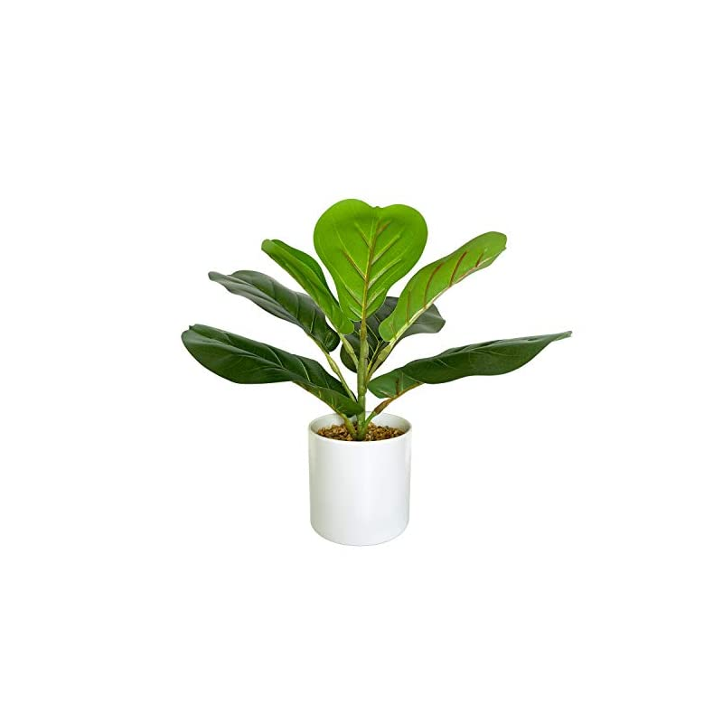 """silk flower arrangements besamenature artificial fiddle leaf fig tree/faux ficus lyrata for home office decoration, 12"""" tall, ships in white planter"""