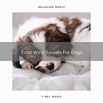 Total Wind Sounds For Dogs