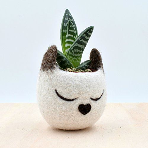 Felt succulent planter | Siamese Cat lover gift for her, Decorative Flower Pot, Small indoor planter