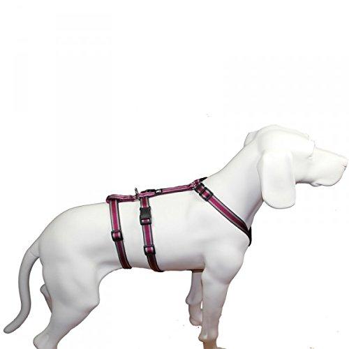 Feltmann NoExit Hundegeschirr® - ausbruchssicher, Panikgeschirr, Pflaume Muster, Bauchumfang 50-65 cm, 20 mm Bandbreite