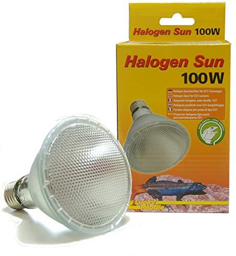 Lucky Reptile -   Hs-100 Halogen Sun,
