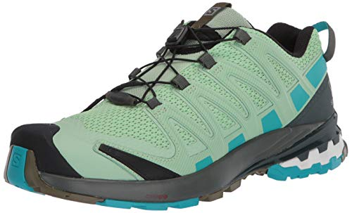 Salomon XA Pro 3D V8 Women's Trail Running / Hiking Shoe, Spruce Stone/Urban Chic/Bluebird, 7.5