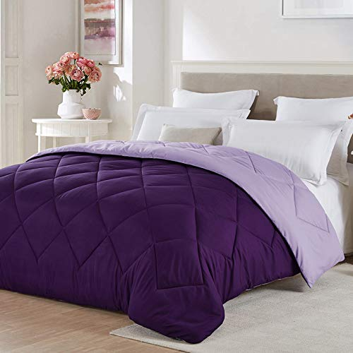 Seward Park Solid Color Reversible Christmas Comforter, Hypoallergenic Plush Microfiber Fill, Duvet Insert or Stand-Alone Comforter, Lightweight, Full/Queen, Plum/Purple