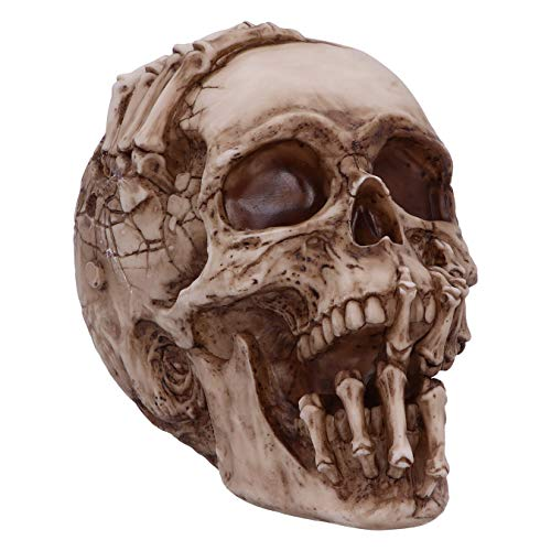 Nemesis Now Officially Licensed James Ryman Breaking Out Skull Skeleton Ornament, Natural, 20cm
