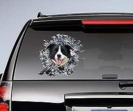 DONL9BAUER Sticker, Black and White Border Collie Window Sticker, Dog car Decal, pet Sticker