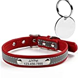 Personalized Dog/Cat Collars Engraved Pet Collar with Name Plated,Reflective,Size Available:Extra-Small Small Medium Large Extra-Large