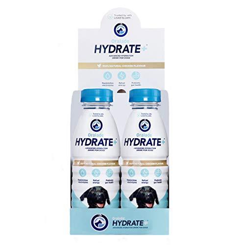 WDT 6x400 ml Oralade Hydrate+ Hund