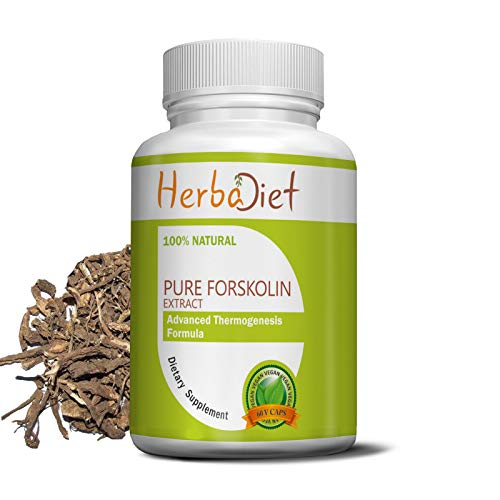 100 pure forskolin extract - 6