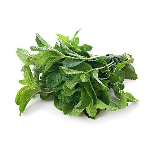 Herb Mint Bunch Organic, 1 Bunch