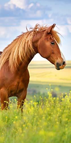 Carbotex Pferde Handtuch 70x140 cm Baumwolle Badetuch Strandtuch Horse Pferd
