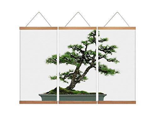 A37mieeooopa - Hanging Posters with Wood Frames Larch Bonsai on White Wall Art Canvas Artwork for Home Decoration Ready to Hang 24'x36' x 3 Panels