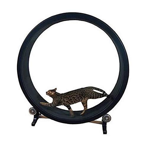 Flashing Cinta de correr para gatos de lujo, marco de escalada para gatos, juguete para gatos, juguete deportivo para gatos, rueda de escalada para gatos, cinta para correr para gatos, rueda para corr