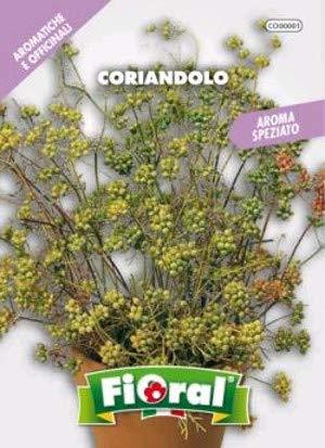 Semences de plantes aromatiques et officinales en sachet pour jardinier amateur