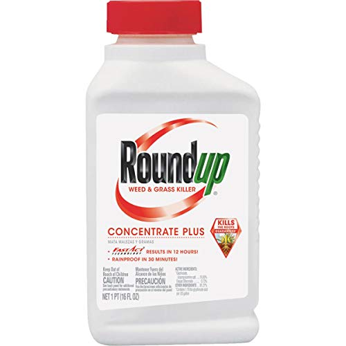 Roundup Weed & Grass Killer Concentrate Plus -  5005510