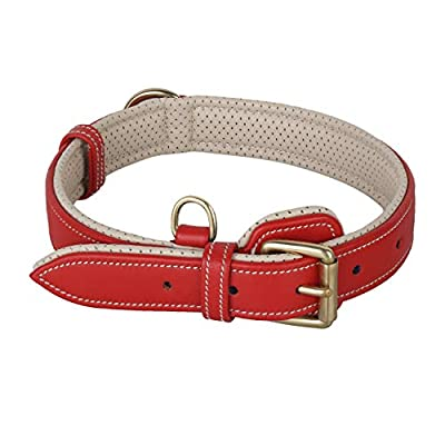 PawFurEver Leather Dog Collar with Soft Breathable Padding for Small Medium and Large Dogs (Small, Red)