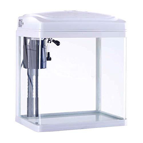 NOY Acuario pequeño de cristal, para acuario, 8 L, de escri