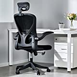 Ergonomic Office Chair, Mesh Computer Chair with Lumbar Support,...