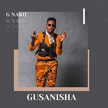 Gusanisha