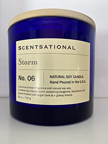 Scentsational Storm No. 6 Scented Jumbo Natural Organic Soy Jar Candle   26oz, 3-Wick