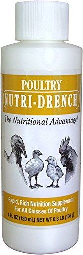 Bovidr Laboratories P-4 OZ Poultry Nutri-Drench