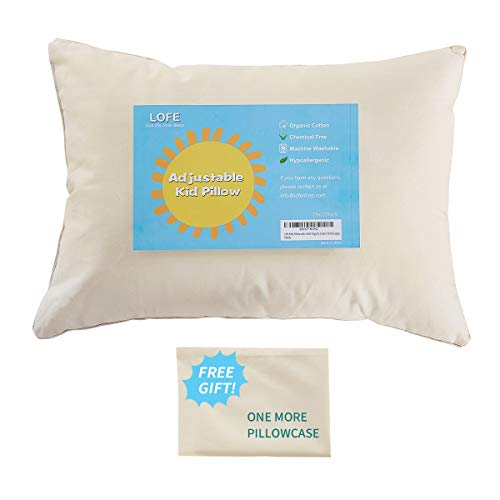 Lofe Standard-Size Pillow with Pillowcase - 20x26,...