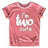 2nd Birthday Outfits for Toddler Girls im Two Cute Shirt Girl 2 Year olds Second (Mauve, 2T)
