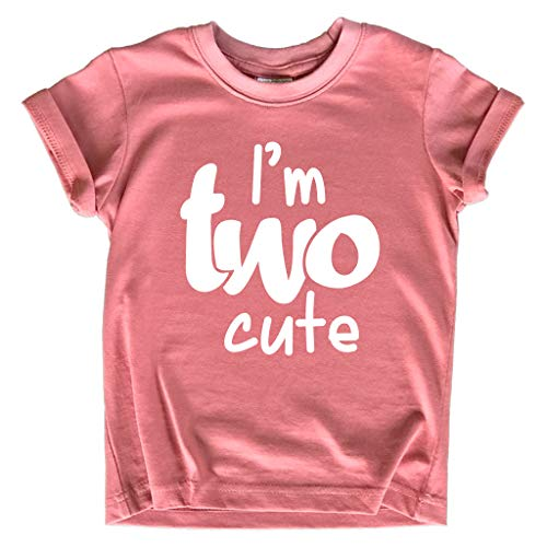2nd Birthday Outfits for Toddler Girls im Two Cute...