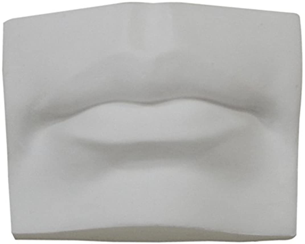 Torino Artist Plaster Cast Large Size Mouth Classic Artist Sculpture for Teaching, Display, Art Class and Studio 9