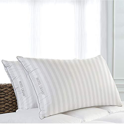 Hotel Grand Softy-Around almohadas de plumas y plumón de 500 hilos Queen 50x71 -2 Pack
