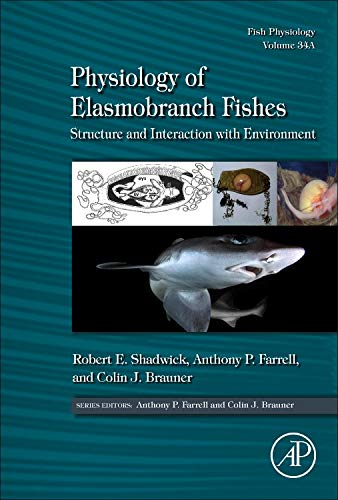 Physiology of Elasmobranch Fishes: Structure and Interaction with Environment (Volume 34A) (Fish Physiology (Volume 34A), Band 34)