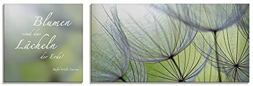 Artland Glasbilder Wandbild Glas Bild 2 teilig 30x30 / 60x30 cm Querformat Natur Blumen Blüten Pusteblumen Spruch Zitat S6PA