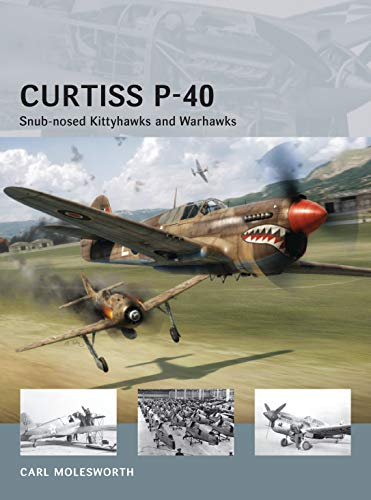 Curtiss P-40: Snub-nosed Kittyhawks and Warhawks