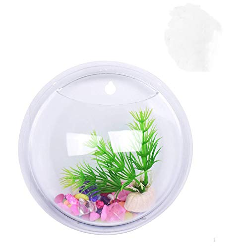 Magiin Transparent Pots de Fleur Décoration en Acrylique Pots Mural à Suspendre Multifonctions Aquarium pour Plantes Verte Fleurs Poisson (26cm)