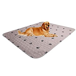 """SincoPet Reusable Pee Pad + Free Puppy Grooming Gloves/Quilted, Fast Absorbing Machine Washable Dog Whelping Pad/Waterproof Puppy Training Pad 2Pack(31""""X36"""")/Housebreaking Absorption Pads 16"""