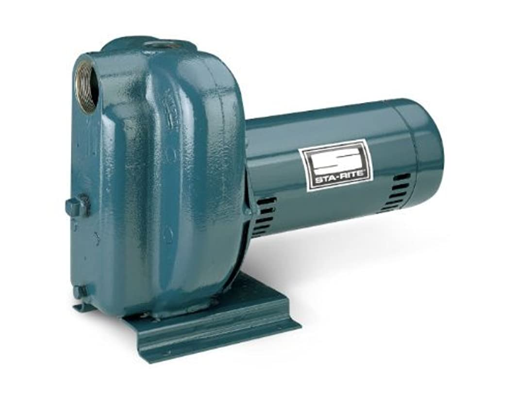 Pentair DS2HF-192PL Single-Phase Self Priming High Head Centrifugal Pool and Spa Pump, 115/230 Volt, 1-1/2 HP