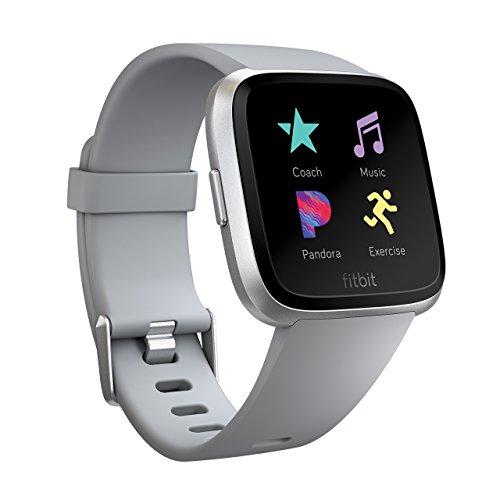 Fitbit Versa スマートウォッチ Gray L/Sサイズ [日本正規品] FB505SRGY-CJK