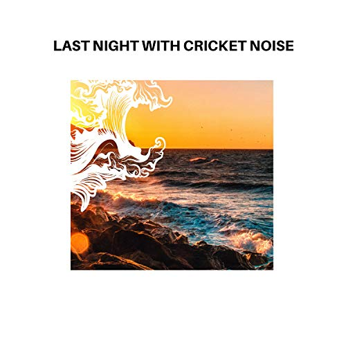 Last Night with Cricket Noise
