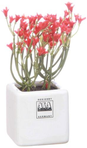 ASA - Campanule artificielle - Rouge - Pot 5x5 cm