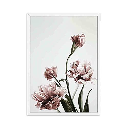 JXMK Póster de Lienzo de Flor de peonía, Pintura de Arte de Pared de Planta de Flor de Rubor nórdico, decoración de Estudio Decorativa escandinava, 40x50cm sin Marco