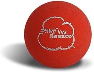 Best sky ball and bat Reviews