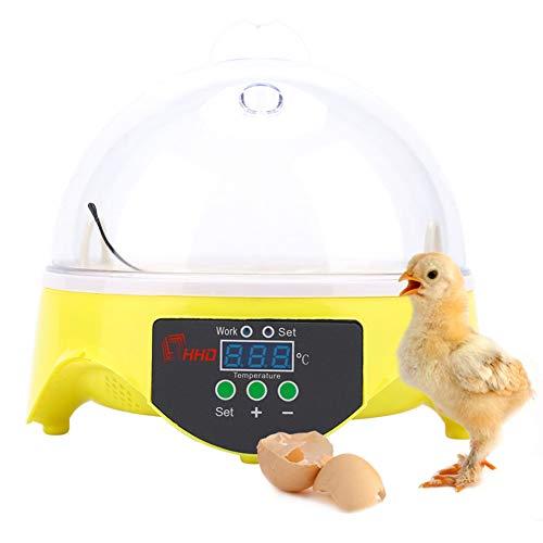 Automatisches Inkubator-7-Ei, Eierbrüter mit digitaler Heimanzeige und Temperaturregelung, digitales Mini-Brutgerät für Entenwachtel-Taubenvögel,110v