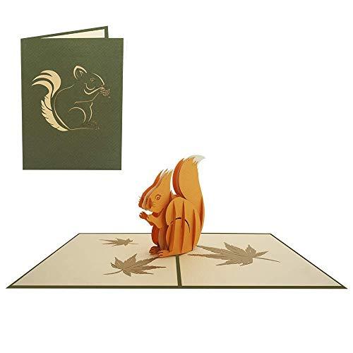 Pop Up Karte 3D Eichhörnchen Geburtstagskarte Tiere Kinder Junge Mädchen Zoo Gutschein - Eichhörnchen 052