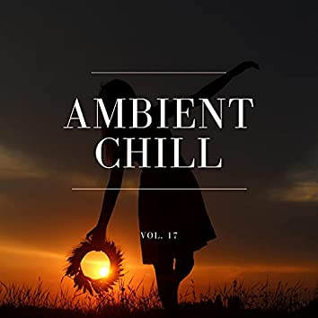 Ambient Chill, Vol. 17