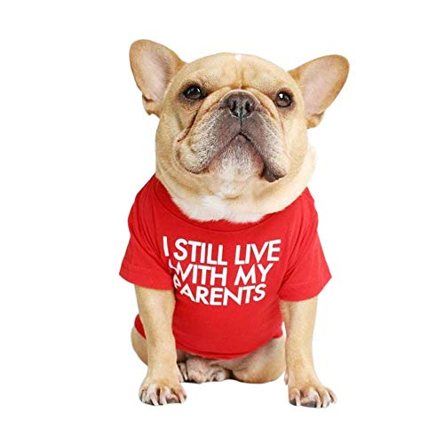 I Still Live with My Parents French Bulldog Dog Shirt for Pet Clothes Puppy T-Shirts Cat Tee Breathable Stretchy Costumes Medium