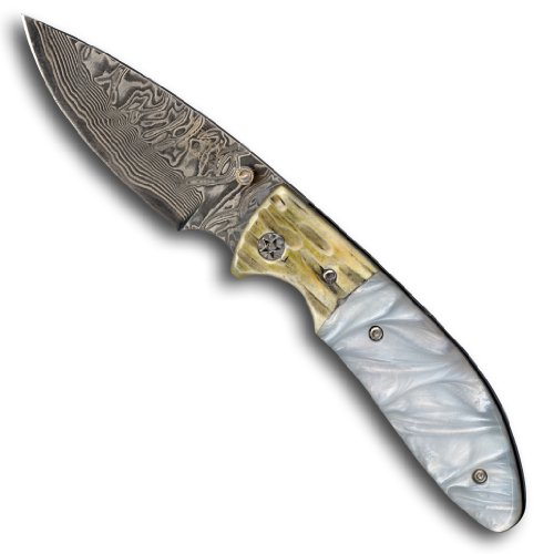 1aTTack.de Taschenmesser Jagdmesser Outdoor Messer - Klinge (19,0 cm) aus 67 Lagen Damaszener Damast Stahl - Taschenmesser Einhandmesser (Sammlerstück) - Harz (Resin) Griff Einlagen