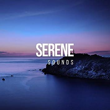 Serene Sounds, Vol. 20
