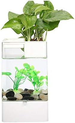 5 ☆ popular CDDJJ Mini Aquariums Acrylic Attention brand Plastic USB with LED Tank Port Fish